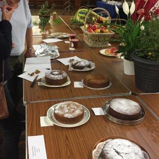 Class 13 Cake judging