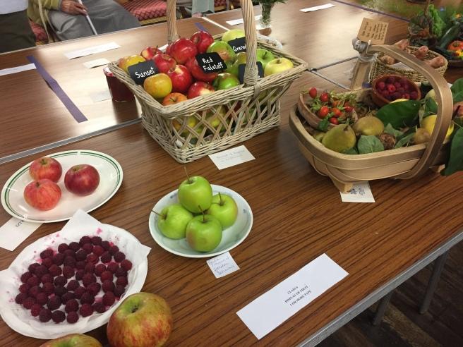Class 6 Fruit