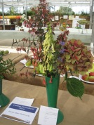 Viv Parson took 1st prize in the flowering shrub class