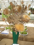 Kathy Aitken won 1st prize for her seed heads