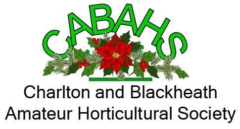 Christmas Cabahs logo for website copy
