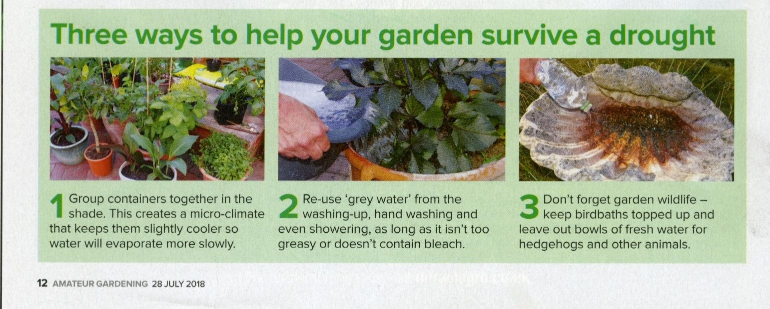 Drought Tips - Copy
