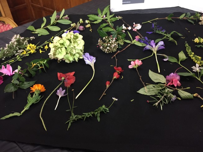 january flowers 3