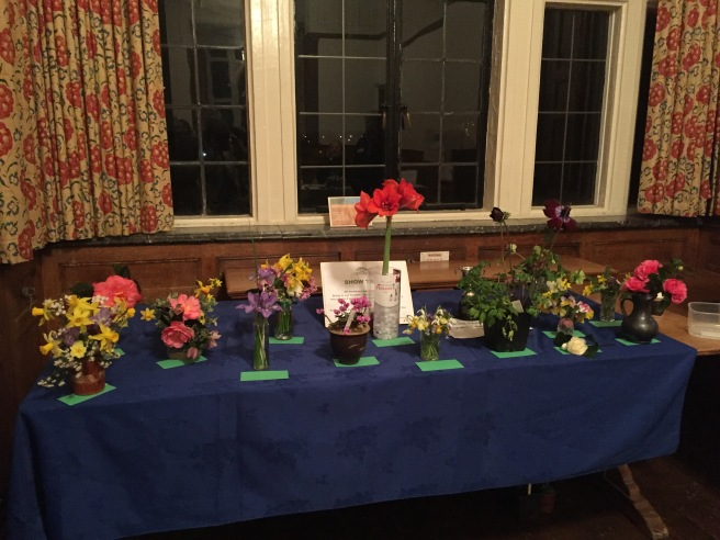 Show Table Feb all
