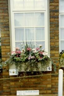 87 Windowbox entry
