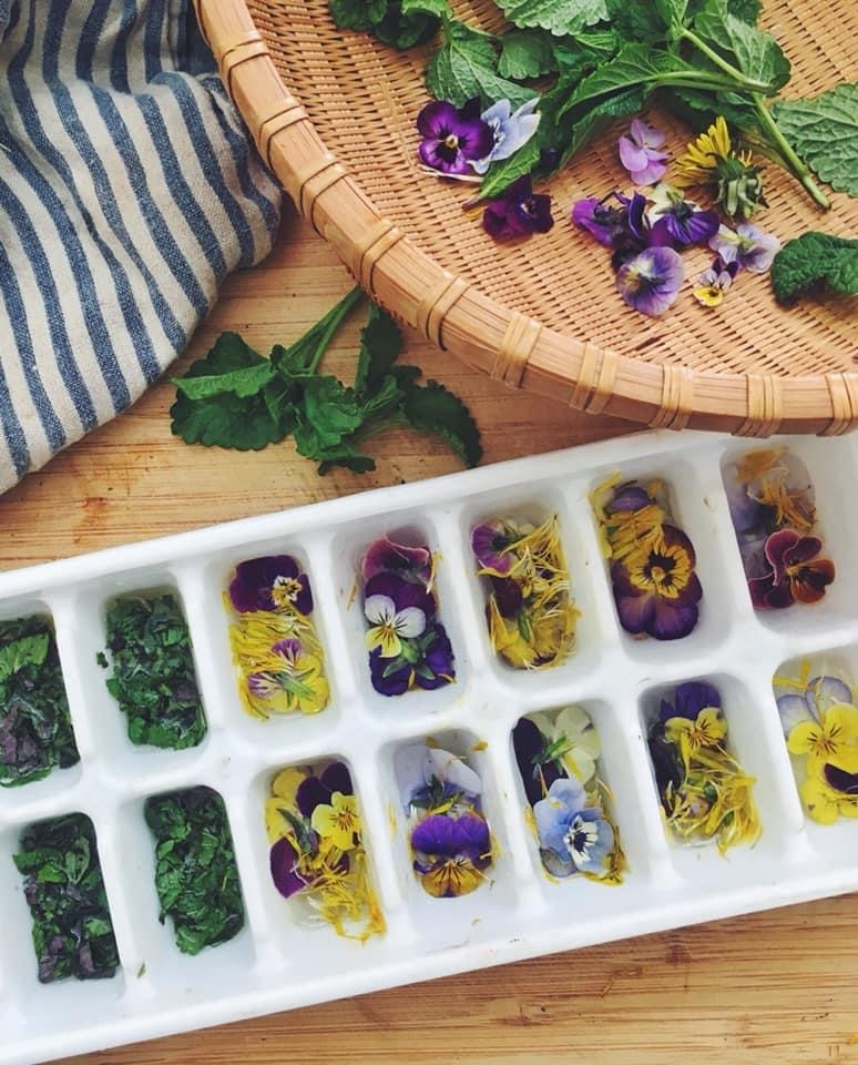 Ice cube herbs and flowers
