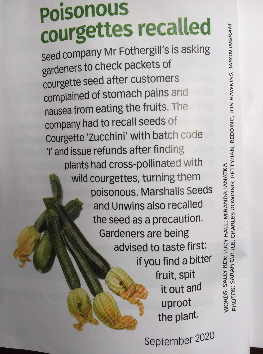 Courgette alert