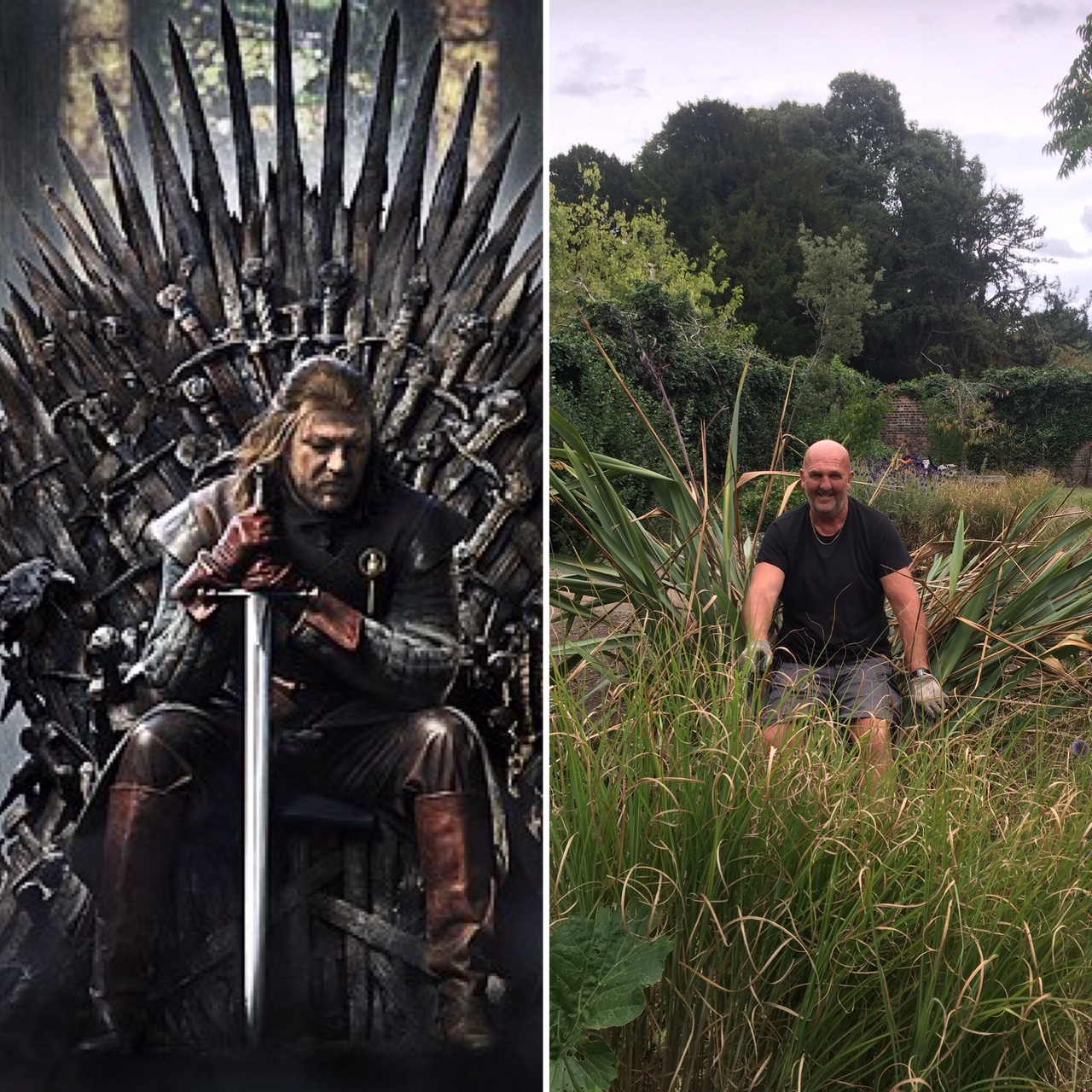 David and the Iron Throne