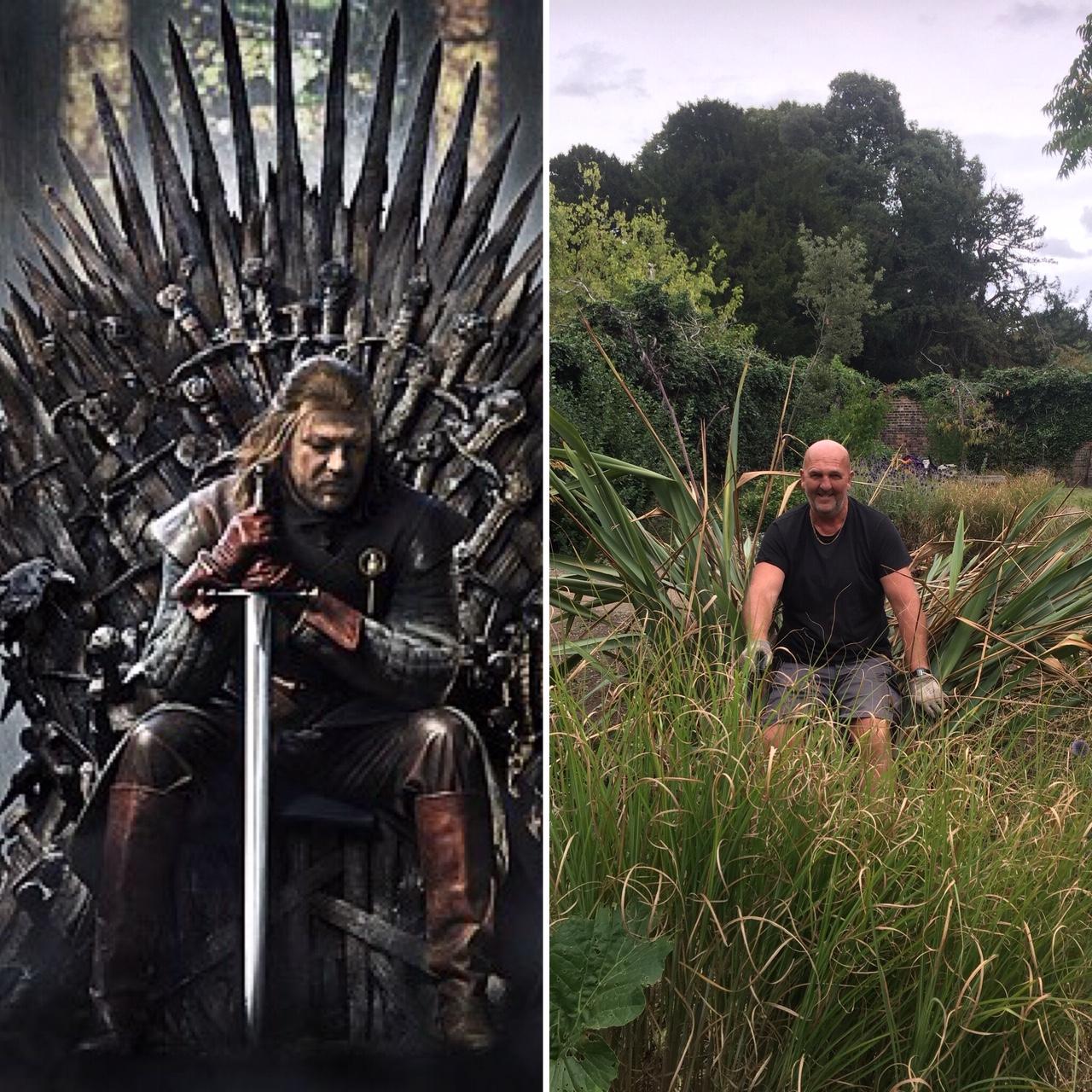 David and the Iron Throne