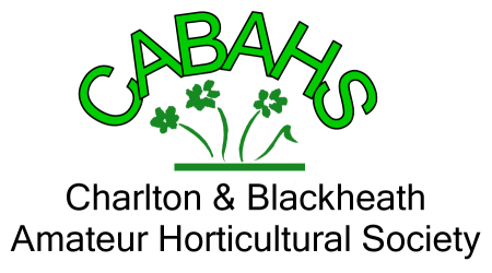 This image has an empty alt attribute; its file name is cabahs-logo-new1.jpg